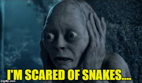 I'M SCARED OF SNAKES.... | made w/ Imgflip meme maker