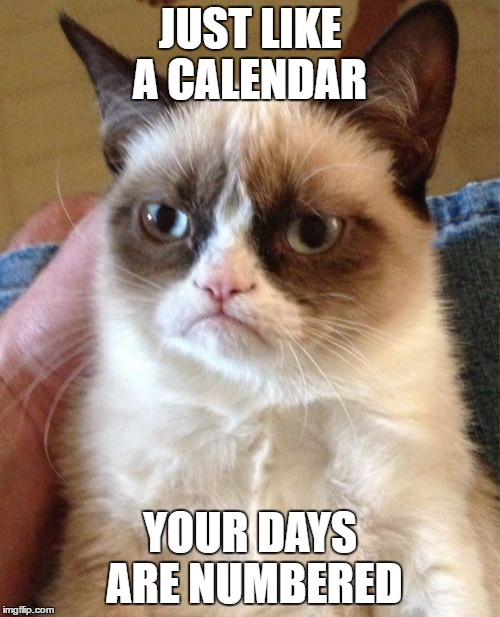 Grumpy Cat Meme | JUST LIKE A CALENDAR YOUR DAYS ARE NUMBERED | image tagged in memes,grumpy cat | made w/ Imgflip meme maker