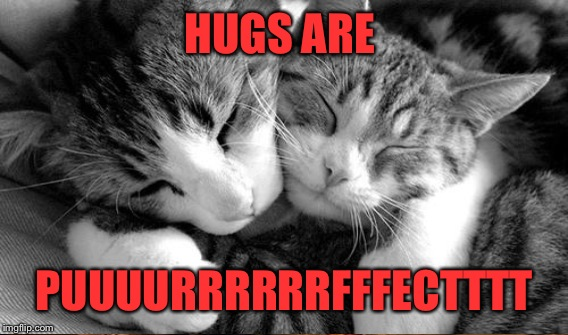 HUGS ARE PUUUURRRRRRFFFECTTTT | made w/ Imgflip meme maker