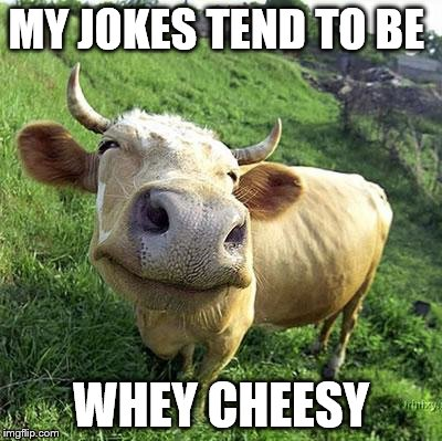 MY JOKES TEND TO BE WHEY CHEESY | made w/ Imgflip meme maker