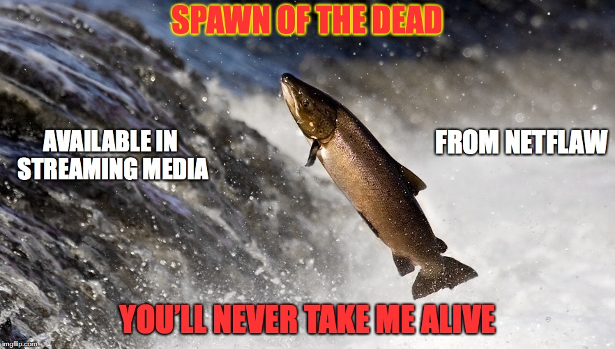 When There's Nowhere Else To Run | SPAWN OF THE DEAD YOU'LL NEVER TAKE ME ALIVE AVAILABLE IN STREAMING MEDIA FROM NETFLAW | image tagged in fishing,funny memes,salmon,parody | made w/ Imgflip meme maker