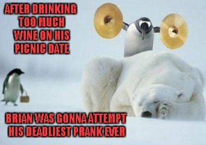 How many of you would risk death to impress your girl? Hmmmm? | AFTER DRINKING TOO MUCH WINE ON HIS PICNIC DATE BRIAN WAS GONNA ATTEMPT HIS DEADLIEST PRANK EVER | image tagged in penguin with cymbals,memes,funny animals,animals,penguin vs polar bear,funny | made w/ Imgflip meme maker