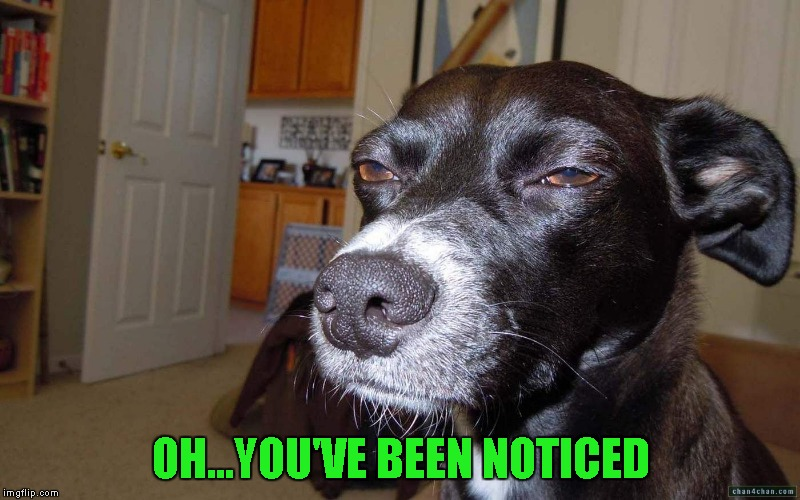 OH...YOU'VE BEEN NOTICED | made w/ Imgflip meme maker