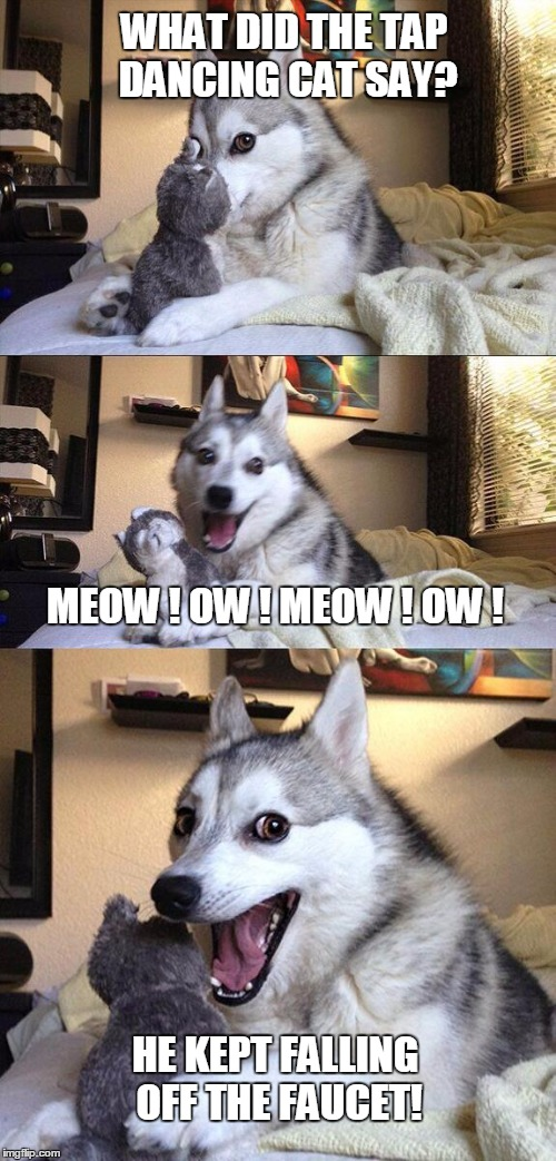 Ouch! | WHAT DID THE TAP DANCING CAT SAY? MEOW ! OW ! MEOW ! OW ! HE KEPT FALLING OFF THE FAUCET! | image tagged in memes,bad pun dog,cats,funny,dancing cats,jokes | made w/ Imgflip meme maker