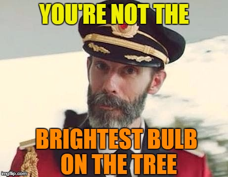 Captain Obvious | YOU'RE NOT THE BRIGHTEST BULB ON THE TREE | image tagged in captain obvious | made w/ Imgflip meme maker