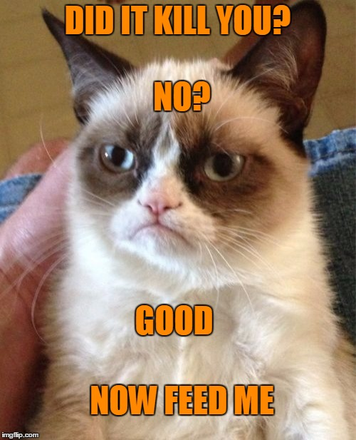 Grumpy Cat Meme | DID IT KILL YOU? NOW FEED ME NO? GOOD | image tagged in memes,grumpy cat | made w/ Imgflip meme maker