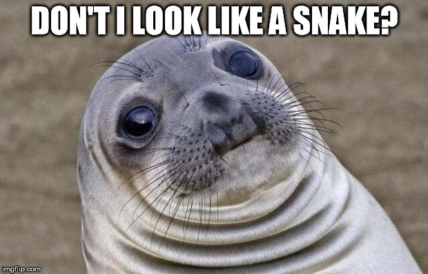 Awkward Moment Sealion Meme | DON'T I LOOK LIKE A SNAKE? | image tagged in memes,awkward moment sealion | made w/ Imgflip meme maker