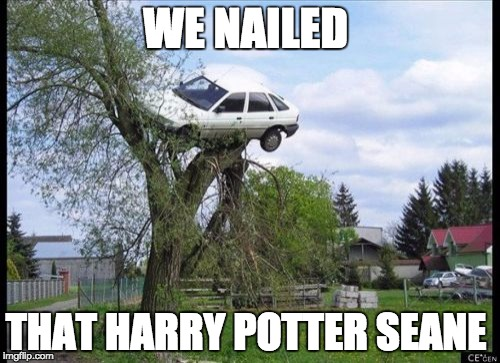 Secure Parking Meme | WE NAILED THAT HARRY POTTER SEANE | image tagged in memes,secure parking | made w/ Imgflip meme maker