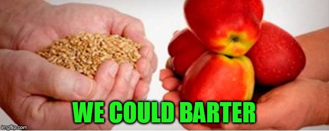 WE COULD BARTER | made w/ Imgflip meme maker