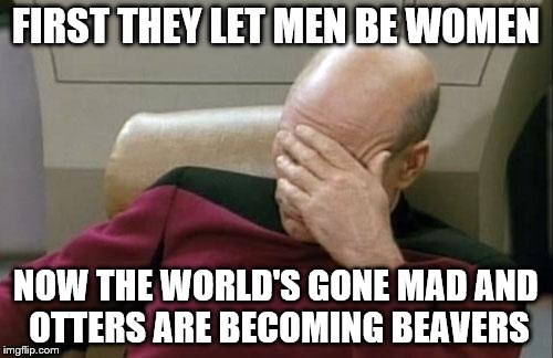 Captain Picard Facepalm Meme | FIRST THEY LET MEN BE WOMEN NOW THE WORLD'S GONE MAD AND OTTERS ARE BECOMING BEAVERS | image tagged in memes,captain picard facepalm | made w/ Imgflip meme maker