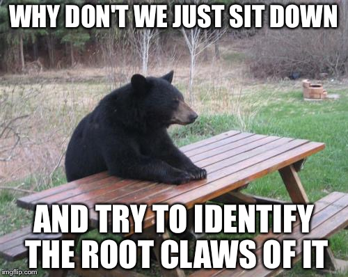 Bad Luck Bear Meme | WHY DON'T WE JUST SIT DOWN AND TRY TO IDENTIFY THE ROOT CLAWS OF IT | image tagged in memes,bad luck bear | made w/ Imgflip meme maker