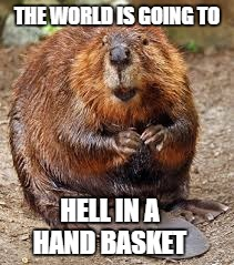 THE WORLD IS GOING TO HELL IN A HAND BASKET | made w/ Imgflip meme maker