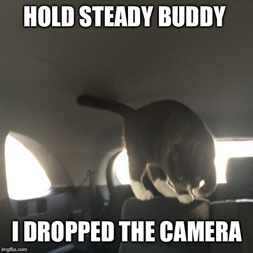 HOLD STEADY BUDDY I DROPPED THE CAMERA | made w/ Imgflip meme maker