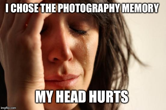 First World Problems Meme | I CHOSE THE PHOTOGRAPHY MEMORY MY HEAD HURTS | image tagged in memes,first world problems | made w/ Imgflip meme maker