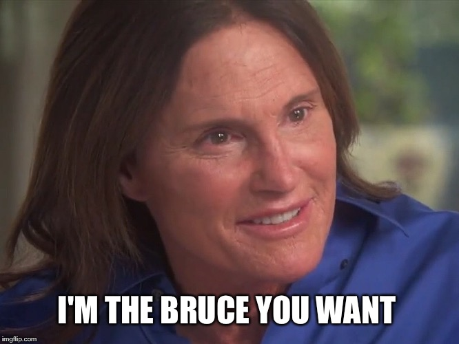 I'M THE BRUCE YOU WANT | made w/ Imgflip meme maker