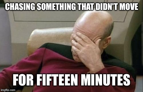 Captain Picard Facepalm Meme | CHASING SOMETHING THAT DIDN'T MOVE FOR FIFTEEN MINUTES | image tagged in memes,captain picard facepalm | made w/ Imgflip meme maker