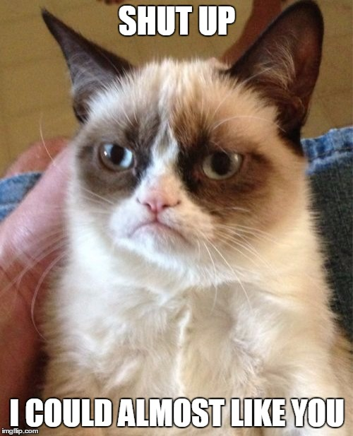 Grumpy Cat Meme | SHUT UP I COULD ALMOST LIKE YOU | image tagged in memes,grumpy cat | made w/ Imgflip meme maker