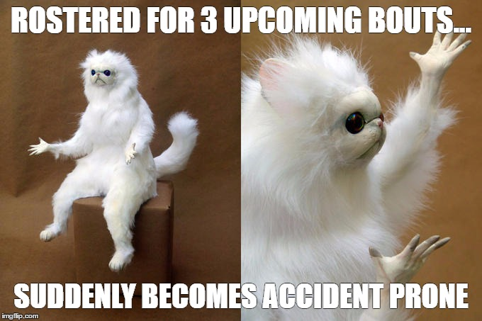1aatxj persian cat room guardian meme imgflip,Accident Prone Meme