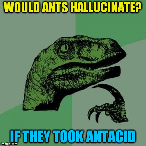 Philosoraptor | WOULD ANTS HALLUCINATE? IF THEY TOOK ANTACID | image tagged in memes,philosoraptor,hallucinate,antacid,funny meme,laughs | made w/ Imgflip meme maker