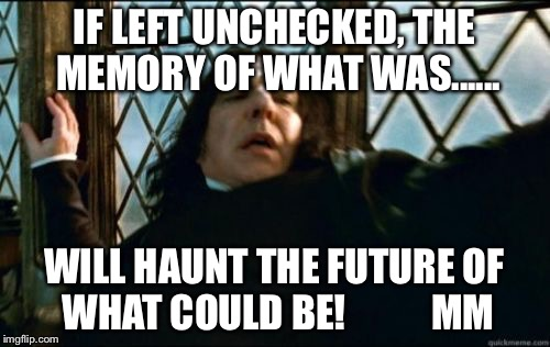 Snape Meme |  IF LEFT UNCHECKED, THE MEMORY OF WHAT WAS...... WILL HAUNT THE FUTURE OF WHAT COULD BE!           MM | image tagged in memes,snape | made w/ Imgflip meme maker