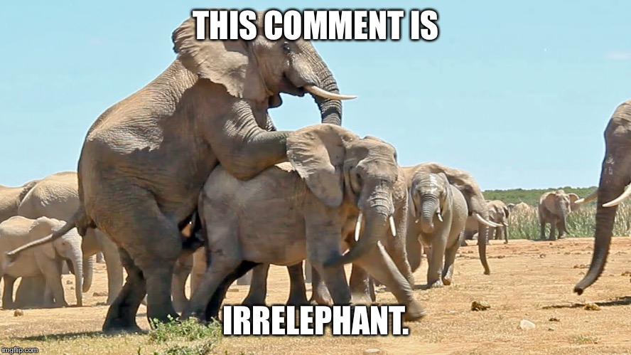 THIS COMMENT IS IRRELEPHANT. | made w/ Imgflip meme maker