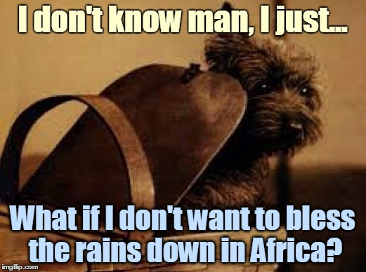 Toto | I don't know man, I just... What if I don't want to bless the rains down in Africa? | image tagged in toto basket wizard of oz,memes,dorothy,toto,1980s,africa | made w/ Imgflip meme maker