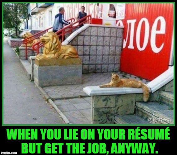 When You Lie on Your Resume | WHEN YOU LIE ON YOUR RÉSUMÉ BUT GET THE JOB, ANYWAY. | image tagged in but get the job anyway,vince vance,funny cat memes,cat pretending to be a lion,lion statue mocked by cat | made w/ Imgflip meme maker