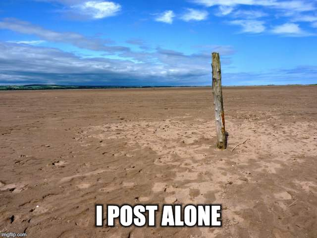 I POST ALONE | made w/ Imgflip meme maker