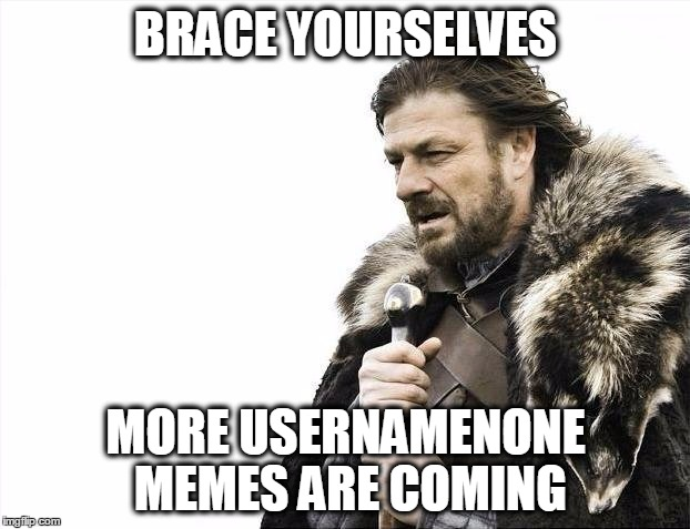 Brace Yourselves X is Coming Meme | BRACE YOURSELVES MORE USERNAMENONE MEMES ARE COMING | image tagged in memes,brace yourselves x is coming | made w/ Imgflip meme maker