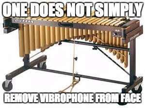 When my jazz teacher tells me to remove an instrument from our faces. | ONE DOES NOT SIMPLY REMOVE VIBROPHONE FROM FACE | image tagged in jazz,band,solo | made w/ Imgflip meme maker