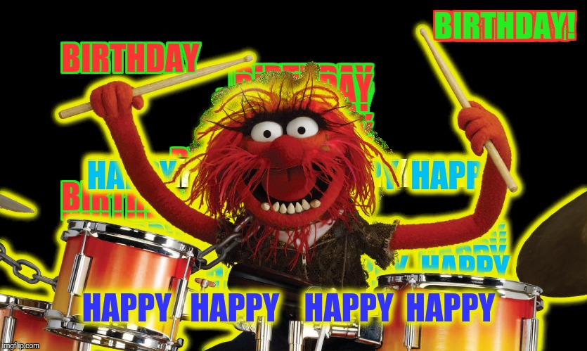 Animal Happy Birthday Meme