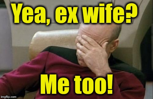 Captain Picard Facepalm Meme | Yea, ex wife? Me too! | image tagged in memes,captain picard facepalm | made w/ Imgflip meme maker