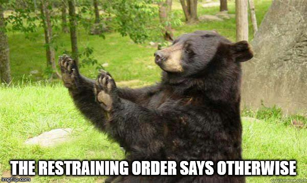 No Bear Blank | THE RESTRAINING ORDER SAYS OTHERWISE | image tagged in no bear blank | made w/ Imgflip meme maker