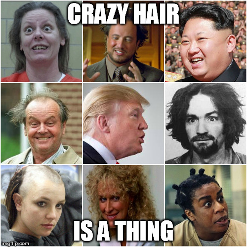 CRAZY HAIR; IS A THING | image tagged in crazy,hair,trump,manson,kim jong un | made w/ Imgflip meme maker