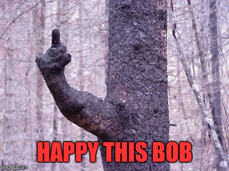 HAPPY THIS BOB | made w/ Imgflip meme maker