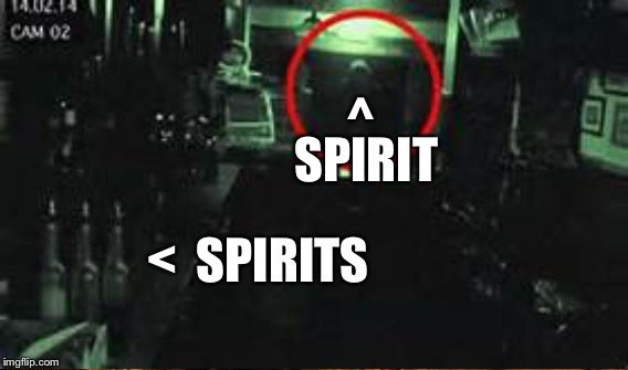 have a drink on me | ^ <  SPIRITS SPIRIT | image tagged in memes | made w/ Imgflip meme maker