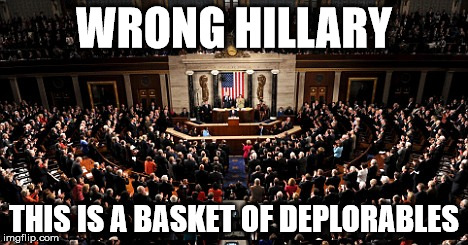 Deplorables |  WRONG HILLARY; THIS IS A BASKET OF DEPLORABLES | image tagged in deplorables | made w/ Imgflip meme maker