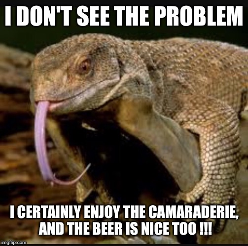 I DON'T SEE THE PROBLEM I CERTAINLY ENJOY THE CAMARADERIE, AND THE BEER IS NICE TOO !!! | made w/ Imgflip meme maker