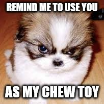 REMIND ME TO USE YOU AS MY CHEW TOY | made w/ Imgflip meme maker
