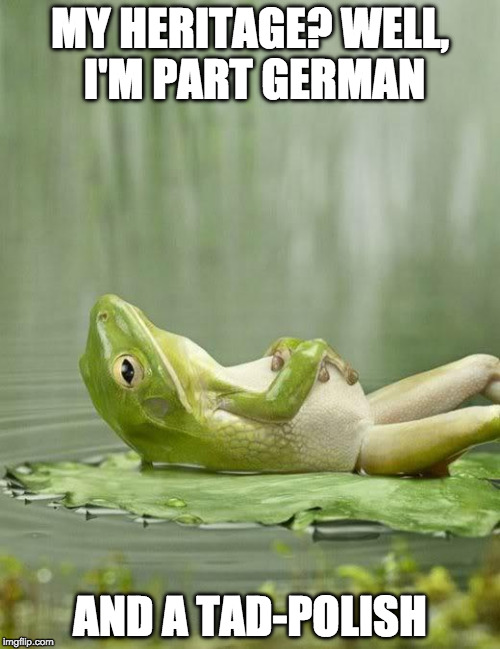 I couldn't find a bad pun frog | MY HERITAGE? WELL, I'M PART GERMAN AND A TAD-POLISH | image tagged in chillinfrog,bad pun,iwanttobebacon,frog,polish,kermit the frog | made w/ Imgflip meme maker
