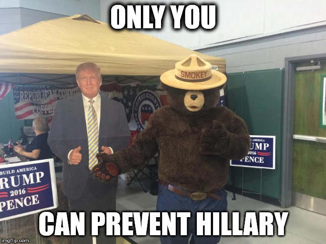 Smokey says.... | ONLY YOU CAN PREVENT HILLARY | image tagged in donald trump | made w/ Imgflip meme maker