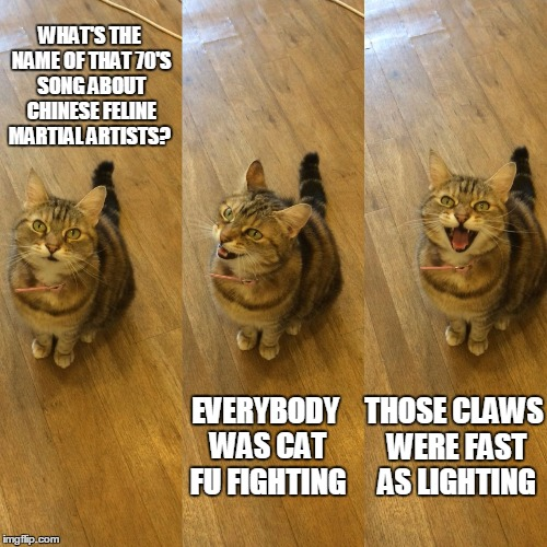 Bad Pun Cat |  WHAT'S THE NAME OF THAT 70'S SONG ABOUT CHINESE FELINE MARTIAL ARTISTS? THOSE CLAWS WERE FAST AS LIGHTING; EVERYBODY WAS CAT FU FIGHTING | image tagged in bad pun cat | made w/ Imgflip meme maker