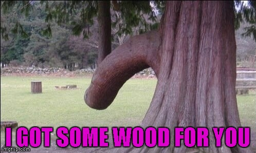 I GOT SOME WOOD FOR YOU | made w/ Imgflip meme maker