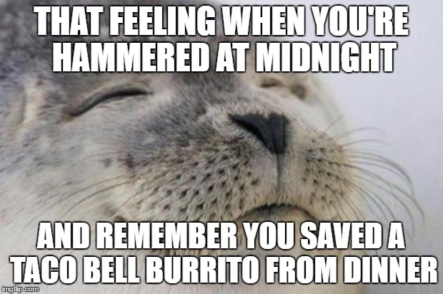 Happy Seal | THAT FEELING WHEN YOU'RE HAMMERED AT MIDNIGHT AND REMEMBER YOU SAVED A TACO BELL BURRITO FROM DINNER | image tagged in happy seal,AdviceAnimals | made w/ Imgflip meme maker