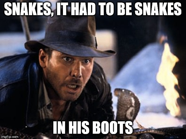Indiana Jones - It Had To Be Snakes | SNAKES, IT HAD TO BE SNAKES IN HIS BOOTS | image tagged in indiana jones - it had to be snakes | made w/ Imgflip meme maker