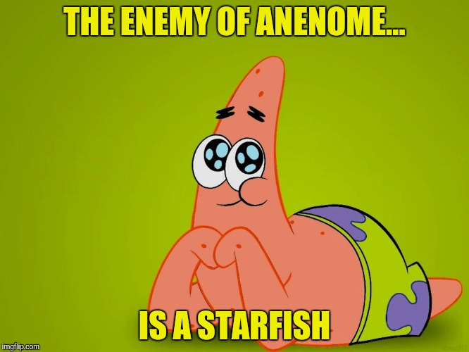THE ENEMY OF ANENOME... IS A STARFISH | made w/ Imgflip meme maker