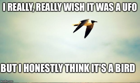 I REALLY, REALLY WISH IT WAS A UFO BUT I HONESTLY THINK IT'S A BIRD | made w/ Imgflip meme maker