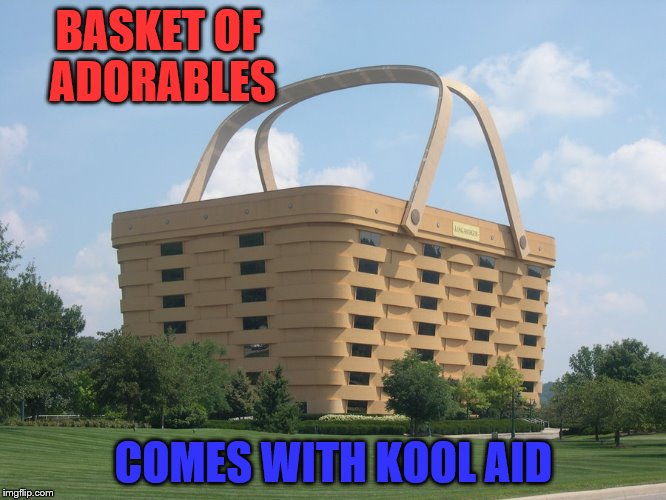 basket | BASKET OF ADORABLES COMES WITH KOOL AID | image tagged in basket | made w/ Imgflip meme maker