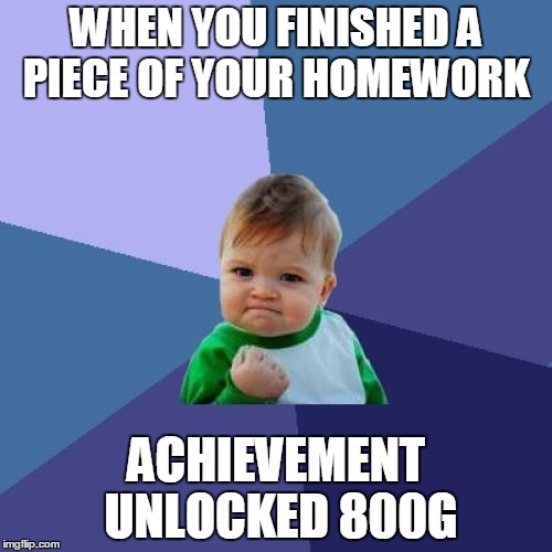 Success Kid Meme |  WHEN YOU FINISHED A PIECE OF YOUR HOMEWORK; ACHIEVEMENT UNLOCKED 800G | image tagged in memes,success kid | made w/ Imgflip meme maker
