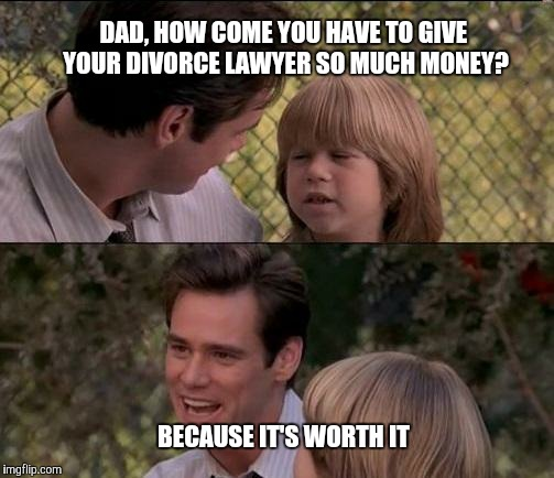 Thats Just Something X Say Meme | DAD, HOW COME YOU HAVE TO GIVE YOUR DIVORCE LAWYER SO MUCH MONEY? BECAUSE IT'S WORTH IT | image tagged in memes,thats just something x say | made w/ Imgflip meme maker